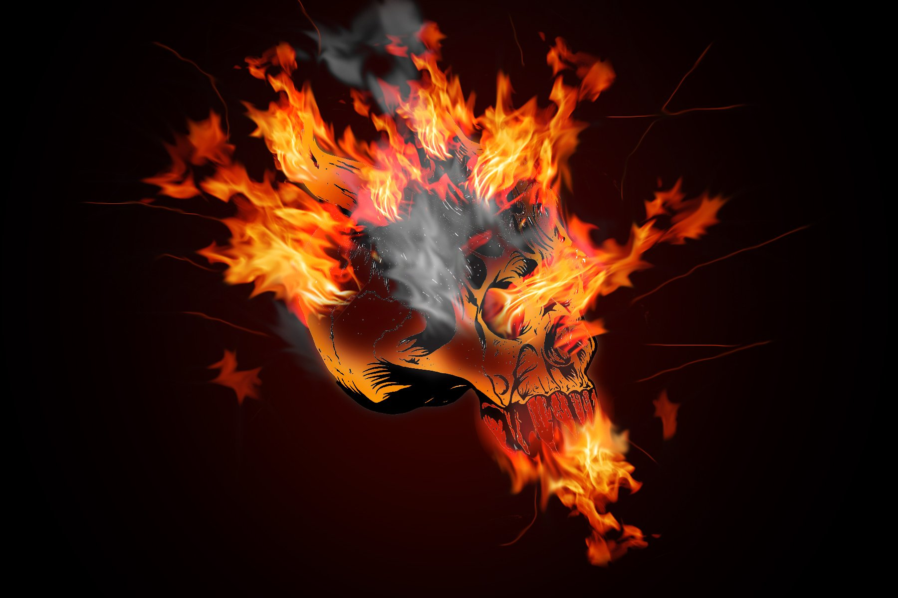 Skull fire flame wallpaper   ForWallpapercom 1800x1200