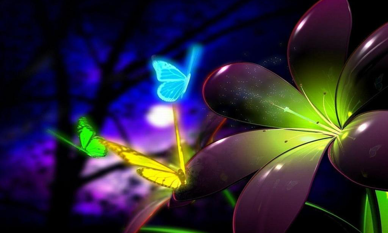 Free Download Collection Of Beautiful Neon Purple Wallpapers If You Enjoy Neon 800x480 For Your Desktop Mobile Tablet Explore 46 Purple Neon Wallpapers Neon Wallpaper Neon Animal Wallpapers Cool Wallpapers Neon