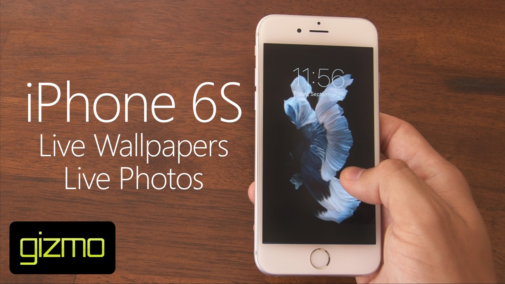 Iphone 6s Stock Wallpaper: IPhone 6s Wallpapers Not Moving