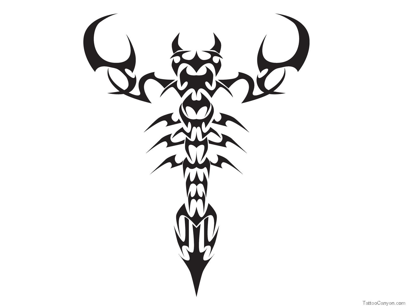 Download Designs Tribal Scorpion Tattoo Wallpaper Picture 382 1600x1200