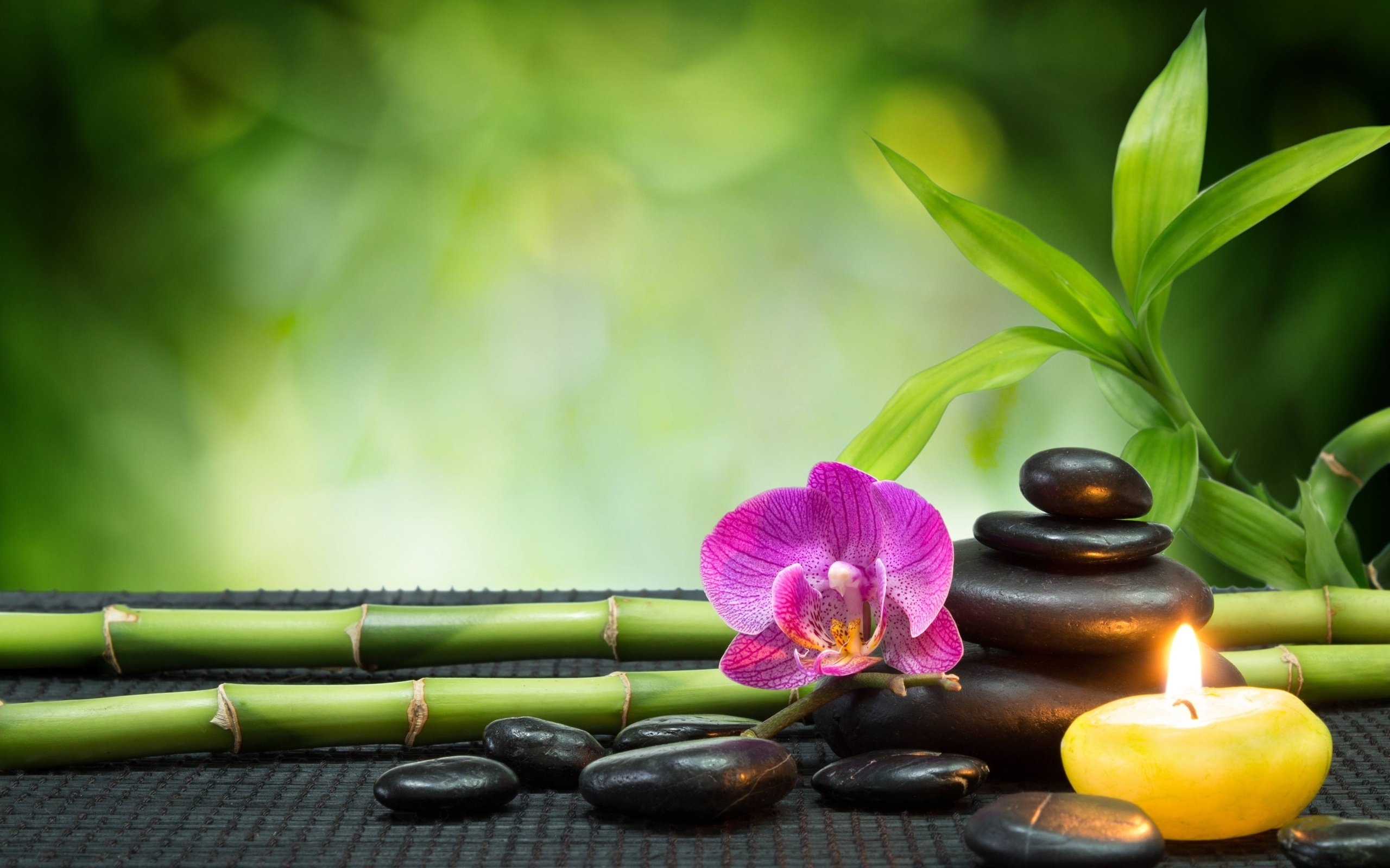 Stones and Spa Massage Wallpapers HD Desktop and Mobile Backgrounds 2560x1600