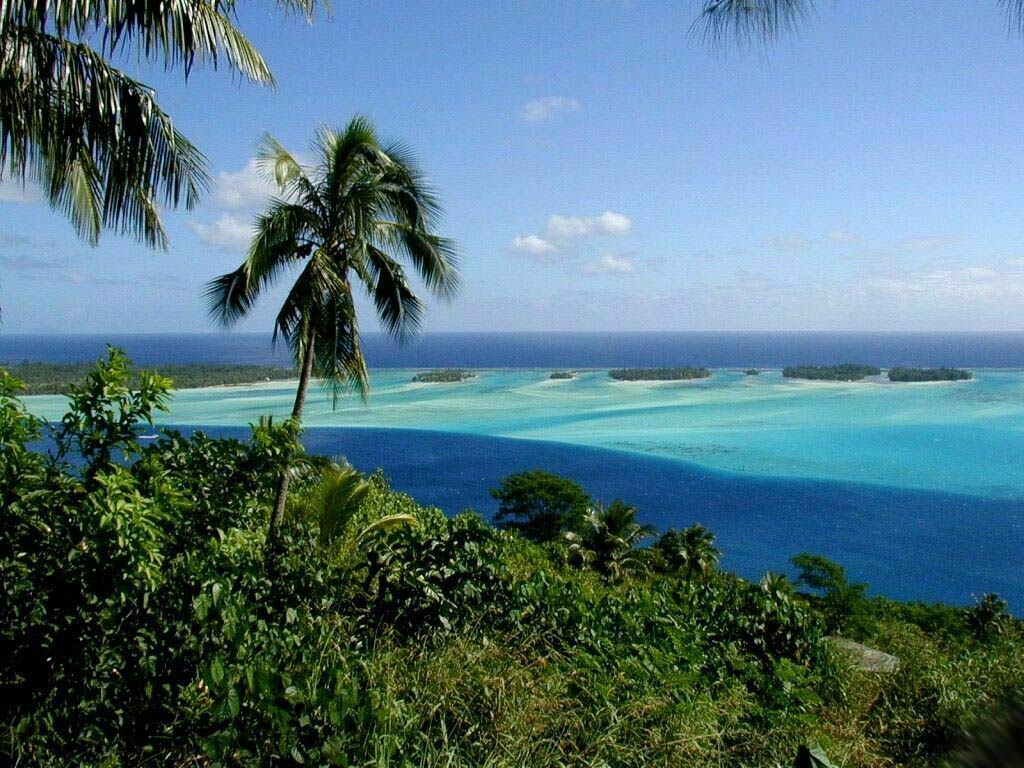 caribbean island WallPapers 1024x768