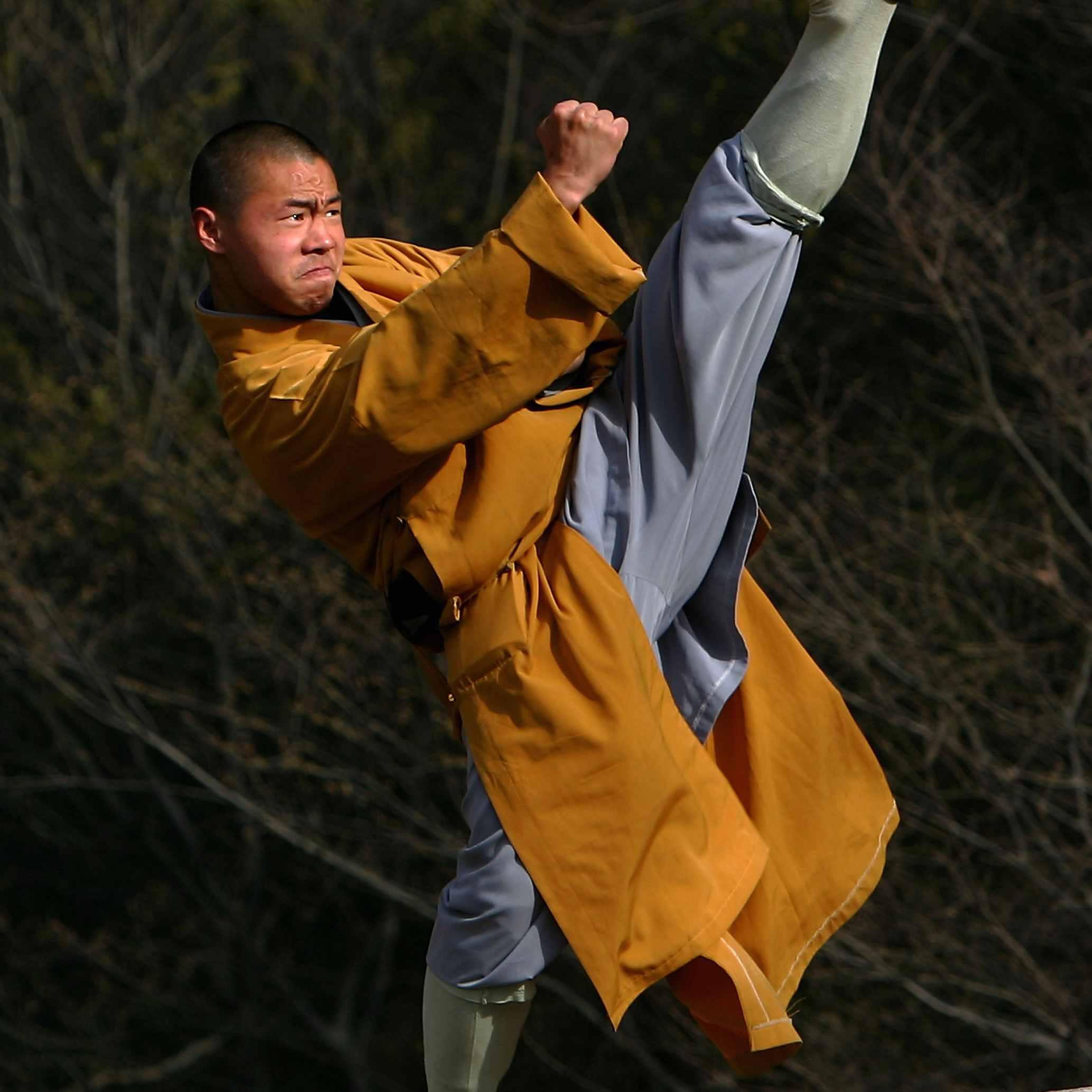 Shaolin Monks Photo Gallery 2066x2066