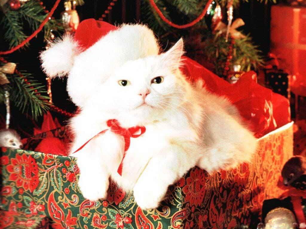 Cute Christmas Desktop Backgrounds wallpaper Cute Christmas Desktop 1024x768