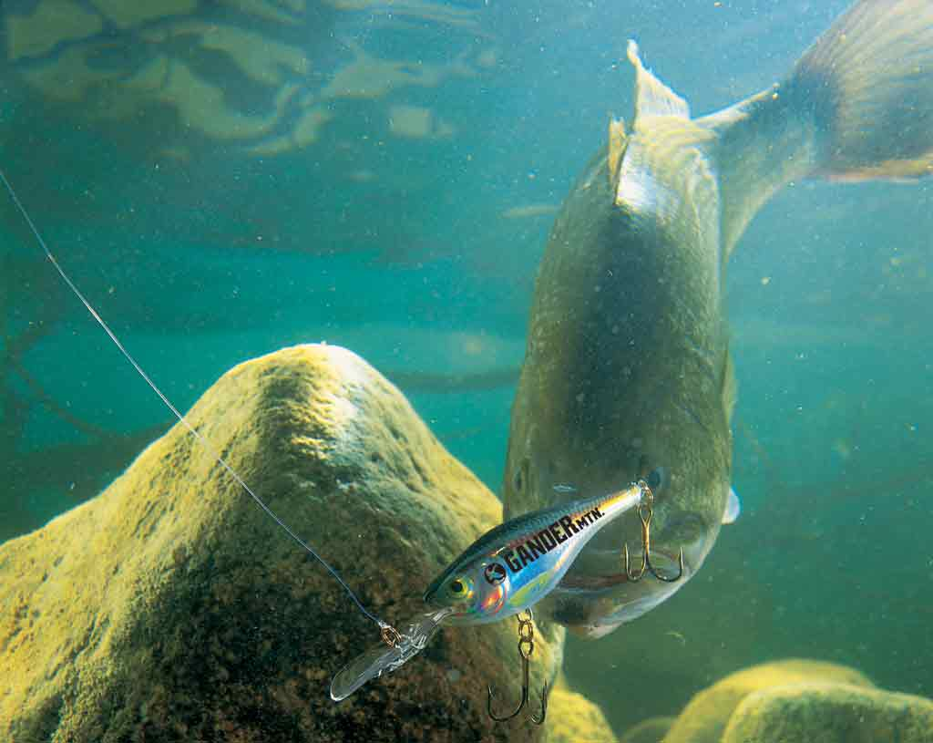 Gander Outdoors Has The Ice Fishing Jigs & Accessories For Your Outdoor bankjack-downloadly.tk Sam Members Save 10%· Get The Gear You Need· Ready To Serve YouBrands: Northland Fishing Tackle, All-Terrain Tackle, A-Tom-Mik, Berkley and more.
