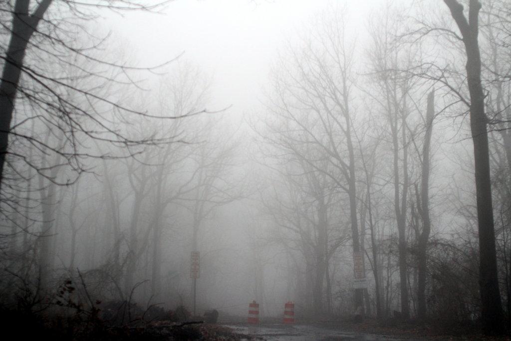 foggy wallpaper