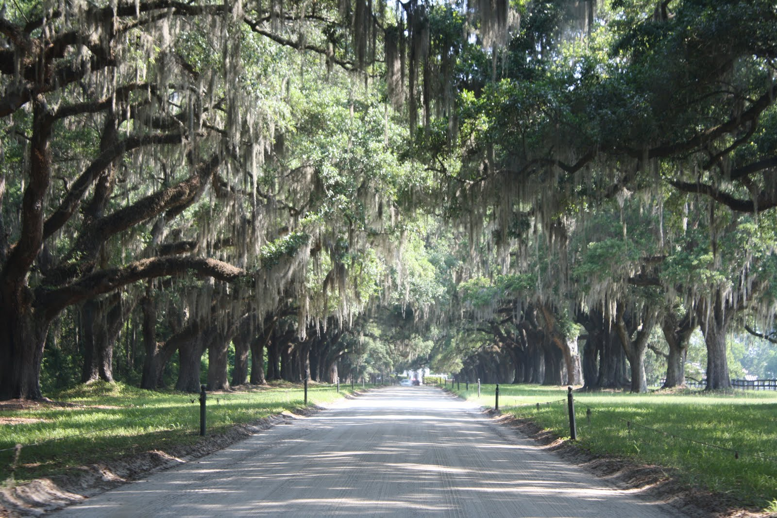 Four Plantations To See In Charleston South Carolina Trip 2 Blog 1600x1067