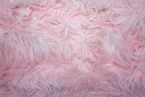 Pink Shag Fluffy Soft Furry Texture Background   a photo on Flickriver 500x333