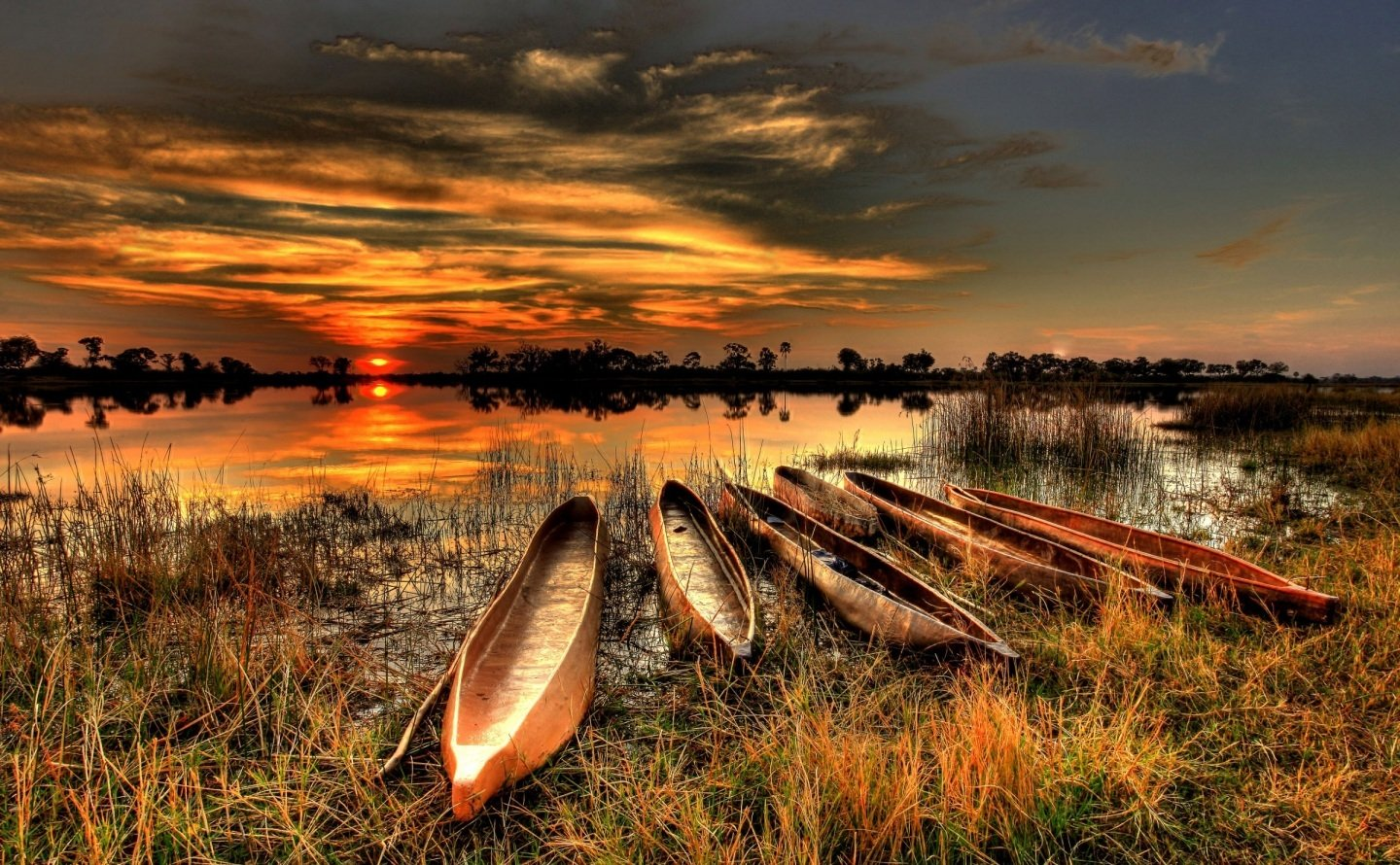 Botswana Wallpapers High Quality Download 1440x890
