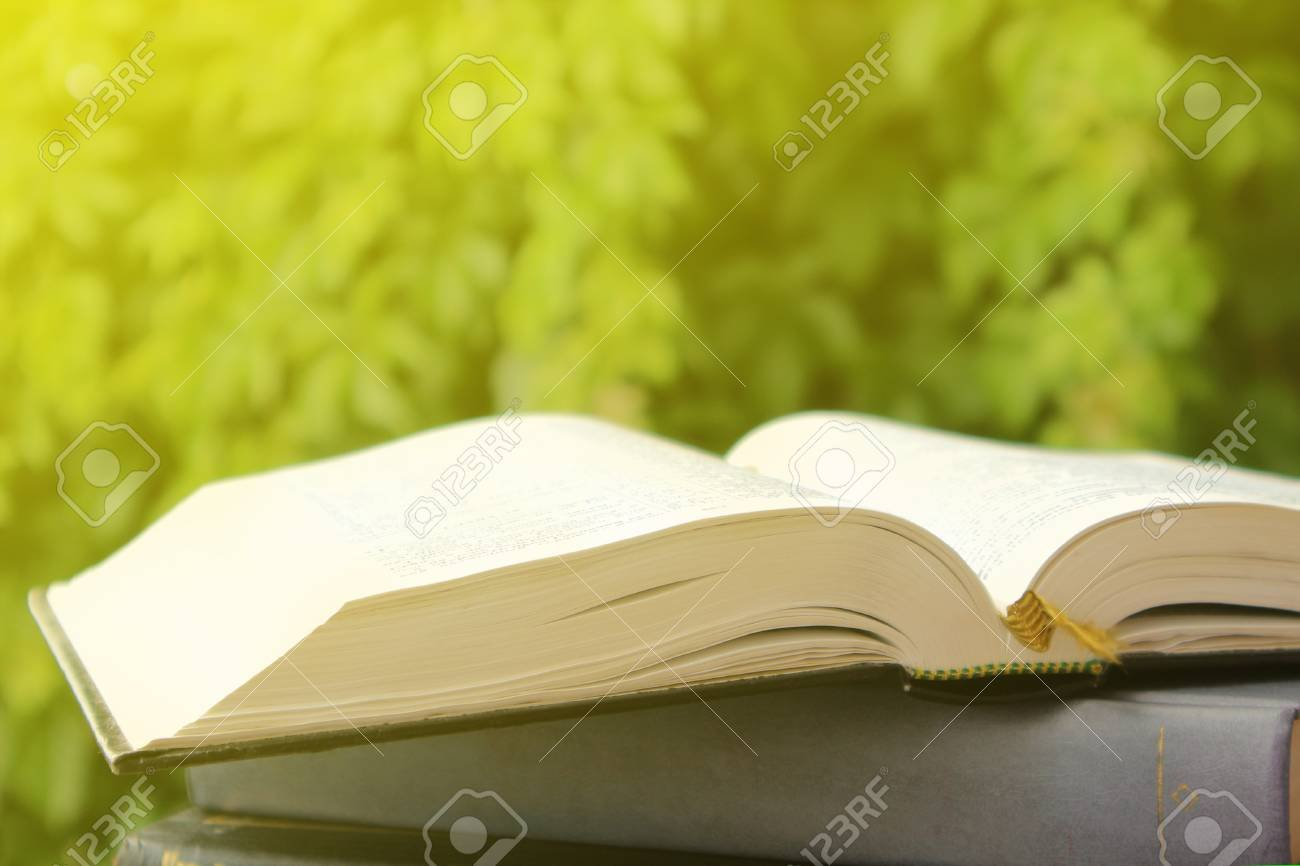 A Stack Of Books On The Background Of Green Vegetation Reading 1300x866