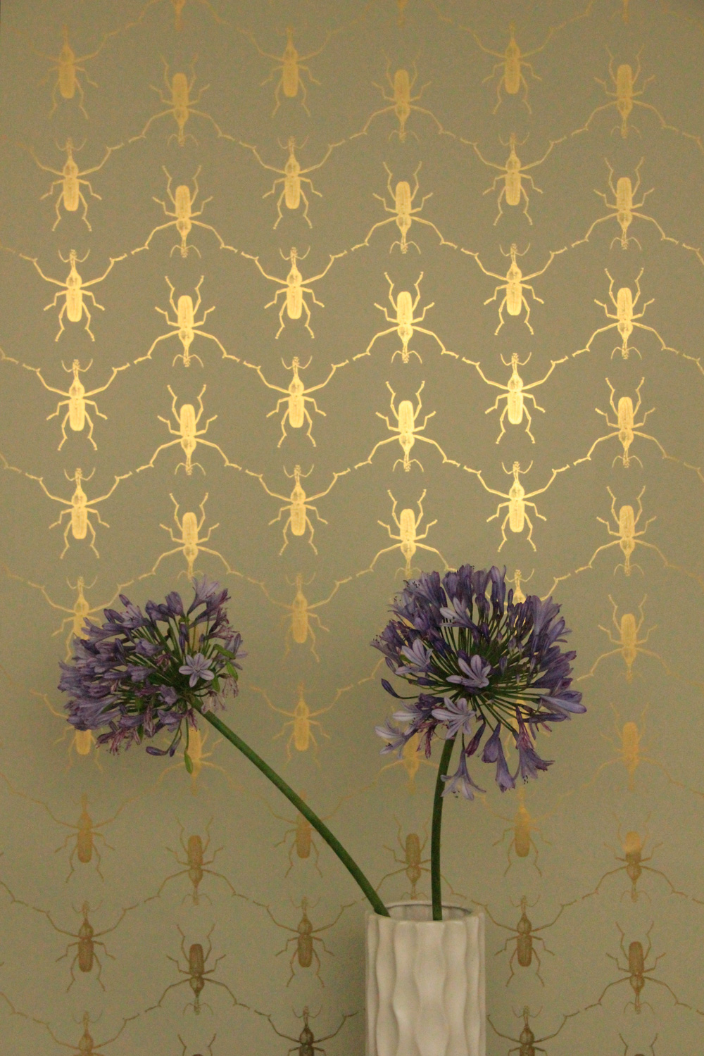 wall full of bugs but only of the best kind I like the use of gold 1000x1500