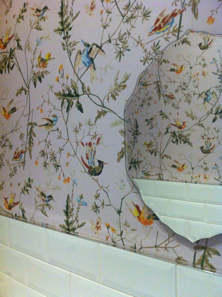 Bird Wallpaper for Home - WallpaperSafari