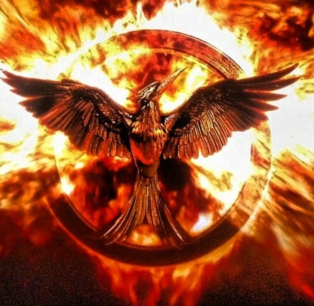 Hunger games mockingjay wallpaper for background   Hot HD Wallpapers 640x624