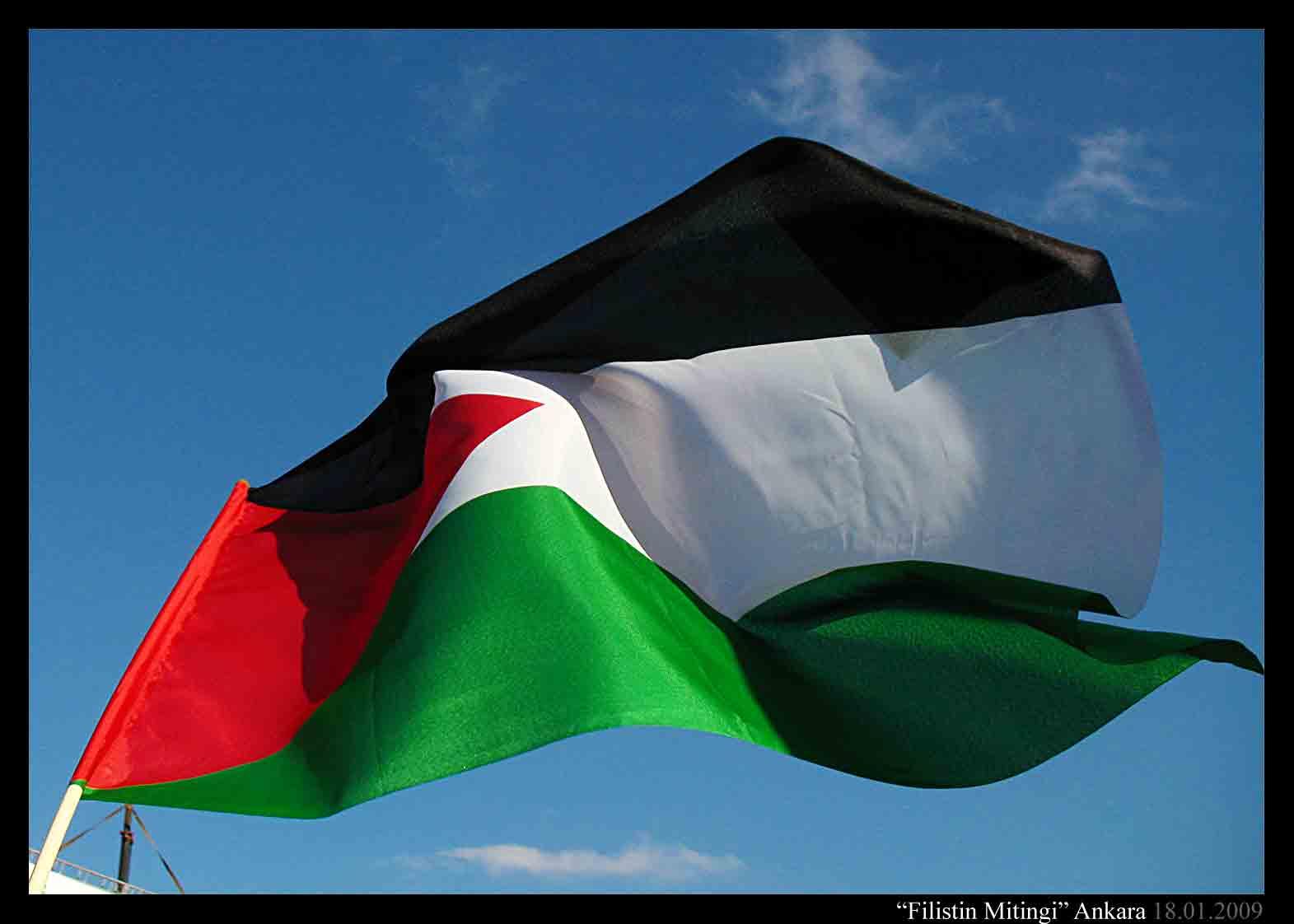 Palestinian Flag Wallpaper Palestine meeting in ankara by 1571x1122