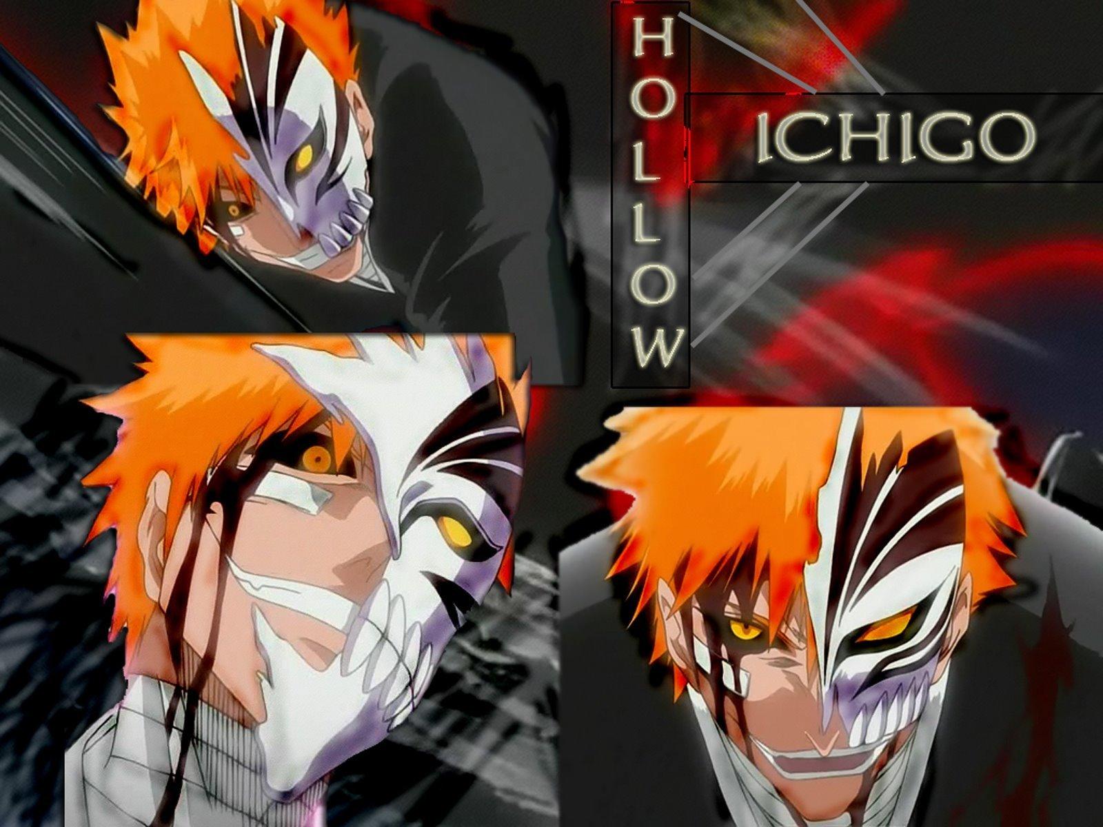Ichigo H   Hollow Ichigo Wallpaper 5791180 1600x1200