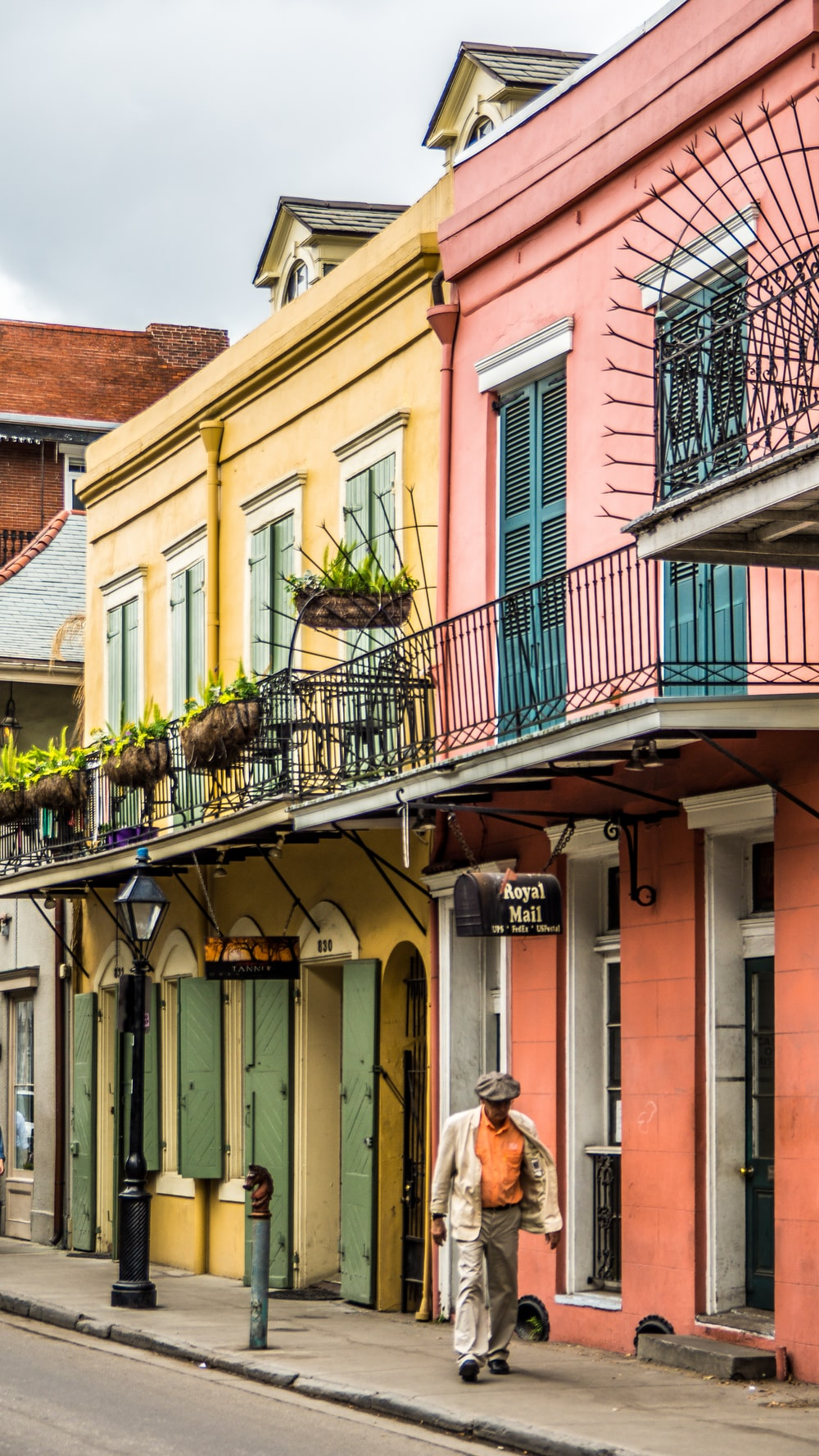 500 New Orleans Pictures Download Images on Unsplash 1000x1777