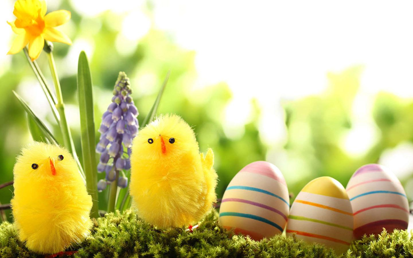 Beautiful Easter Wallpapers HD Easter Images 1440x900