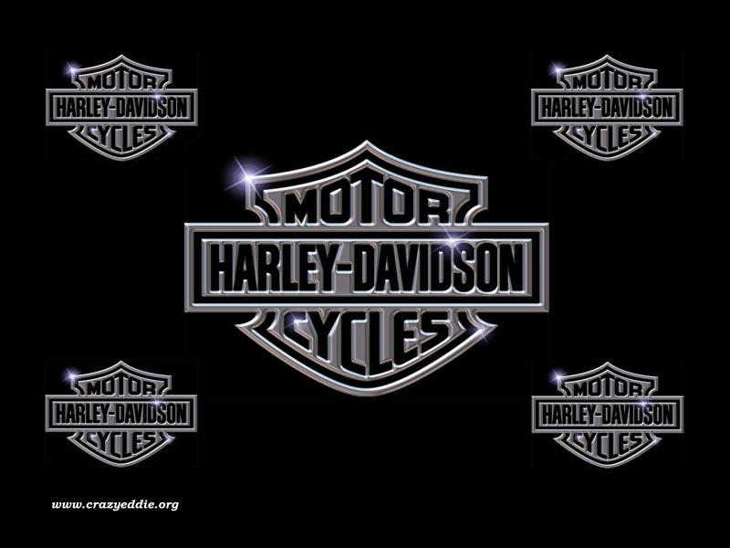 Back to Harley Davidson Wallpaper 800x600