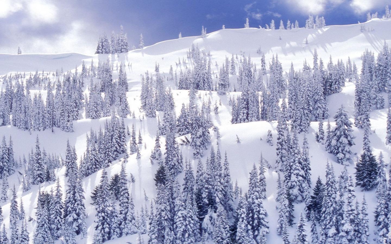 High Definition Wallpapers Winter Desktop Themes Scene Wallpaper 1440x900