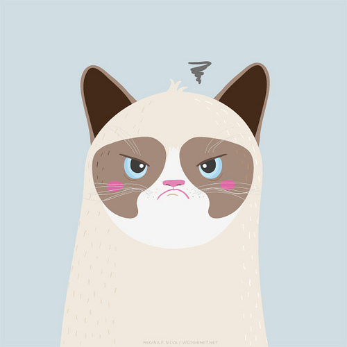 the Grumpy Cat iPhone and Galaxy SIII wallpaper WEDGIENETNET 500x500
