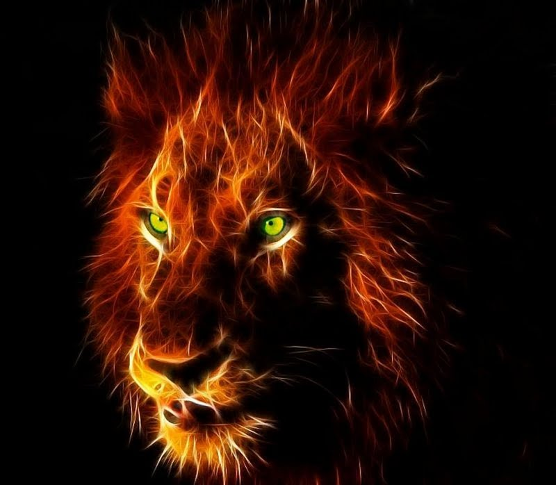 Lion Face Wallpaper