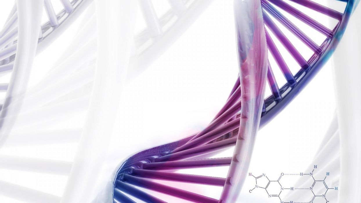 Chromosome dna pattern genetic 3 d psychedelic wallpaper 1244x700
