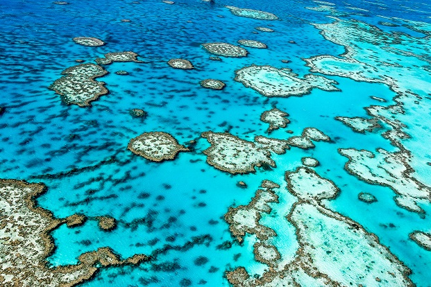 Free Download Great Barrier Reef Wallpaper Beach And Sunset