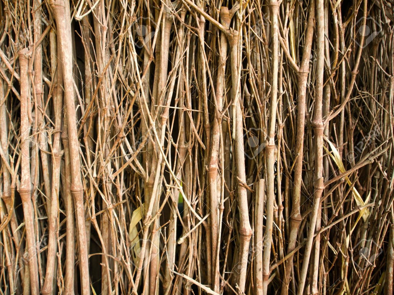 Dried Twigs And Branches Striped Wood Texture Pattern Background 1300x975