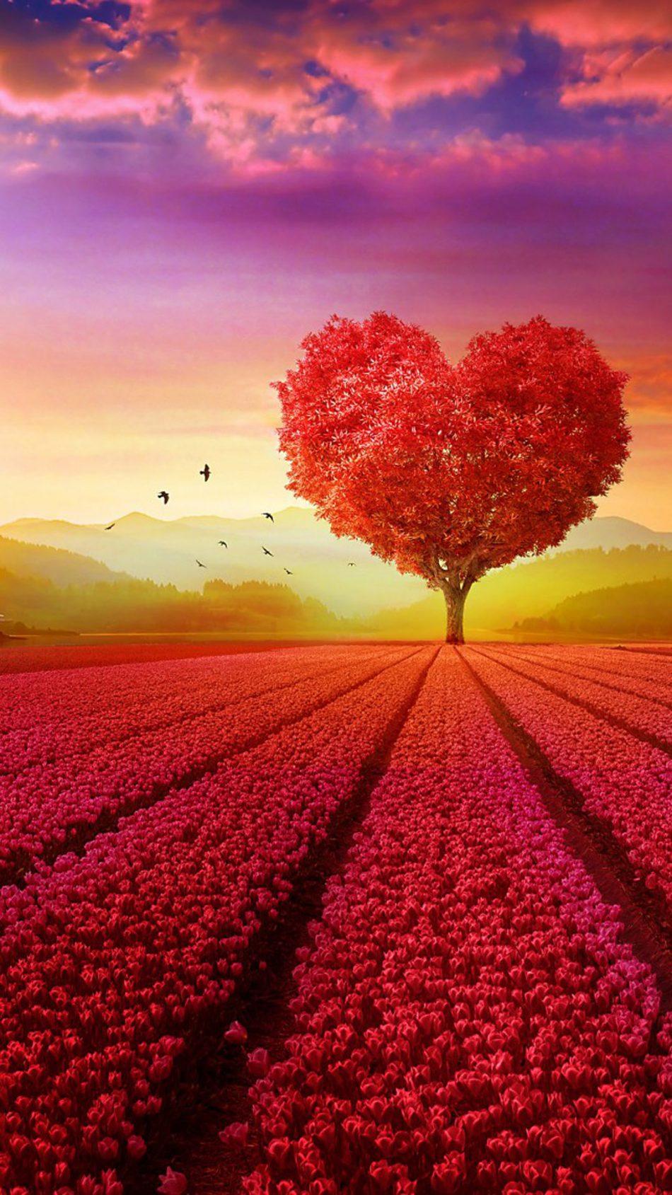 Free Download Download Love Heart Shape Tree Flowers Pure 4k Ultra
