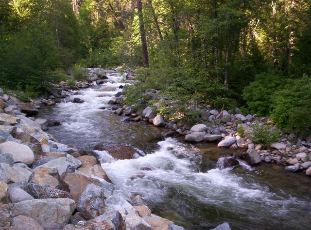 Trout Stream Wallpaper Mountain streams and creeks 640x475