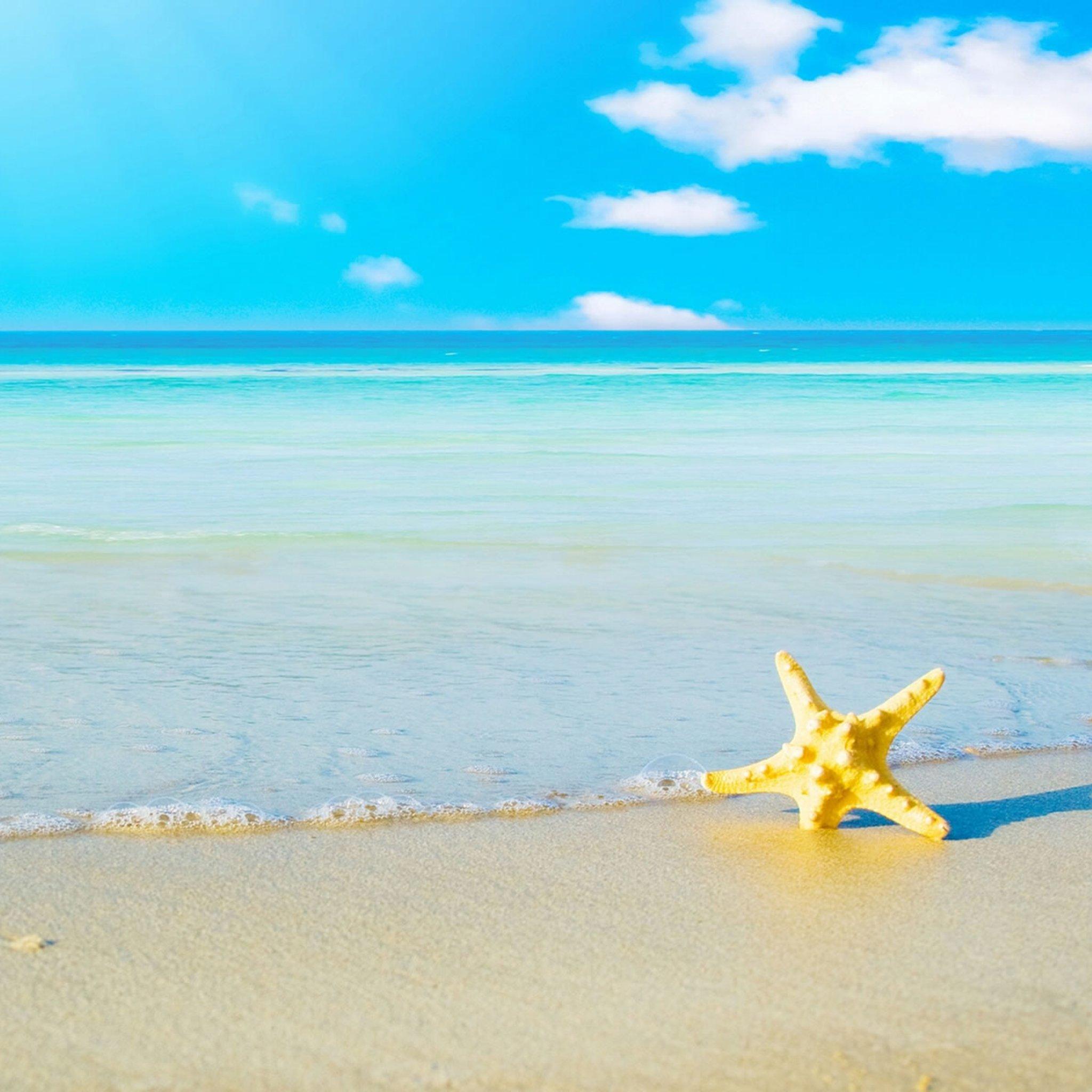 Hd wallpaper ipad - Hd Wallpaper Beach And A Starfish Ipad Help For Ipad Ipad Air Ipad