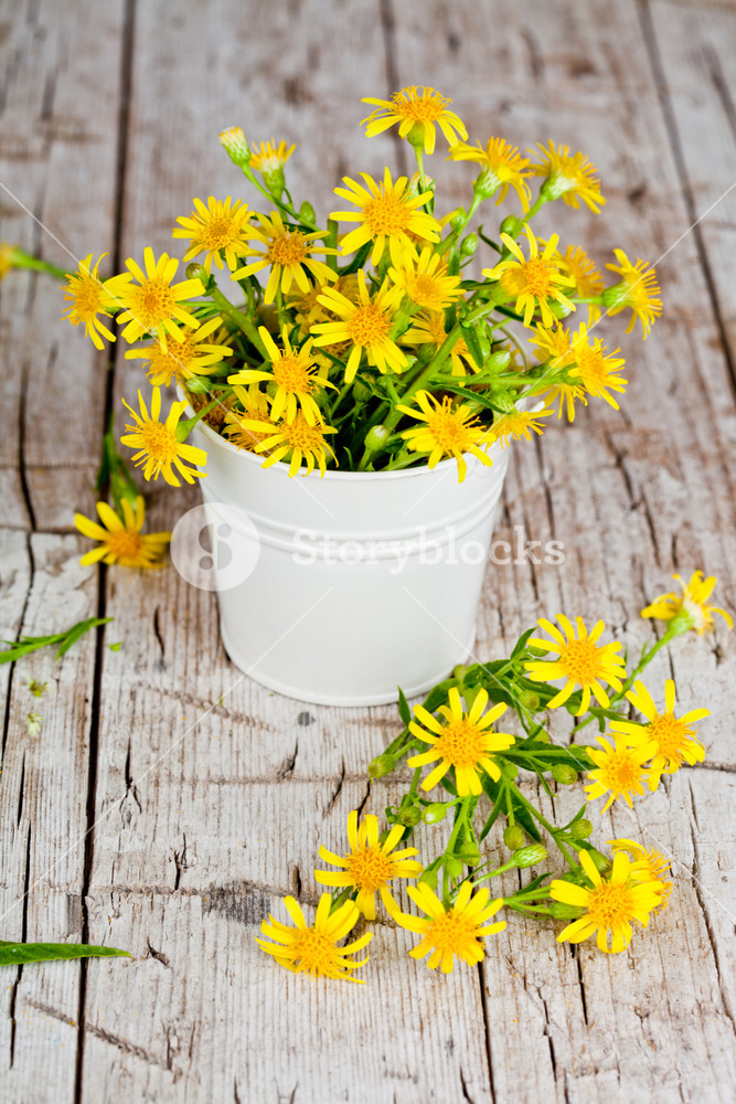 wild yellow flowers in bucket on rustic wooden background Royalty 667x1000