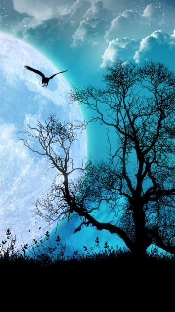 Fantasy Tree And Moon Mobile Phone Wallpapers x Mobile Phone Hd 360x640