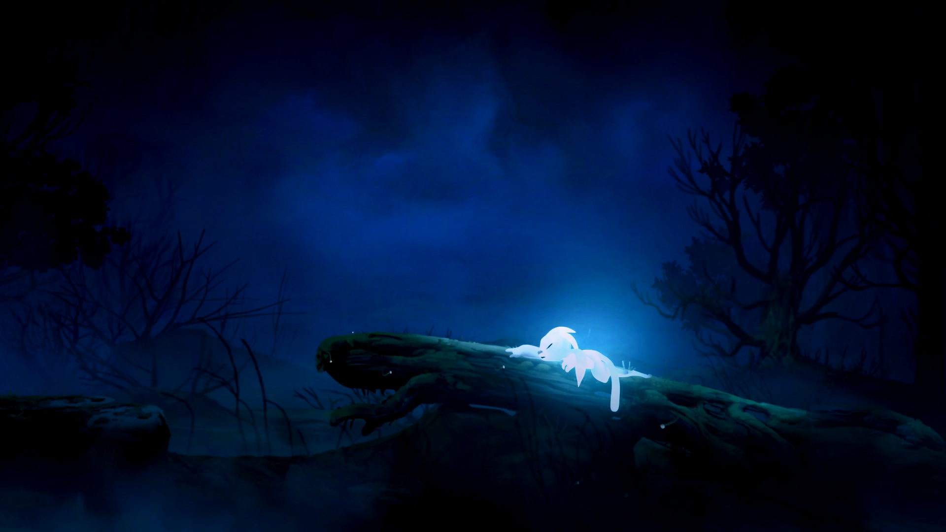 Ori and The Blind Forest Widescreen Desktop Wallpapers ...