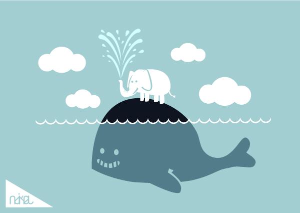 cute whale by ndikol 600x425