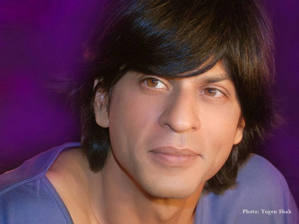 Free Download Bollywood Actors Shahrukh Khan Wallpapers
