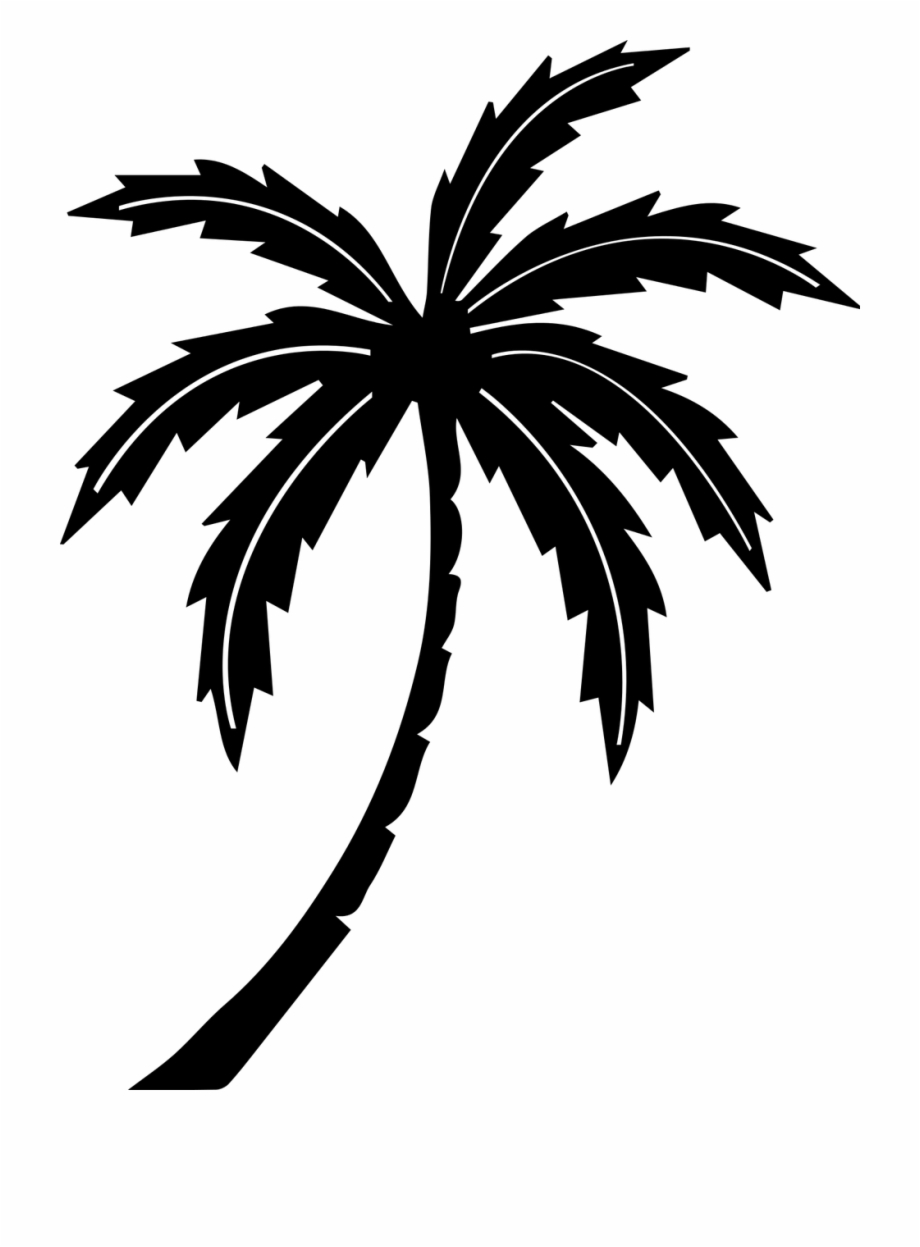 Palm Tree Tree Tropic   Black And White Palm Tree Clipart No 920x1247