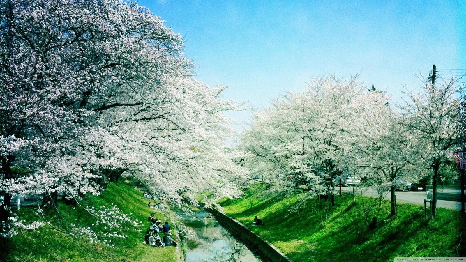 Spring season wallpaper 14292 PC en 1600x900