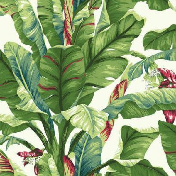 Banana Leaf Wallpaper Warehouse 600x600