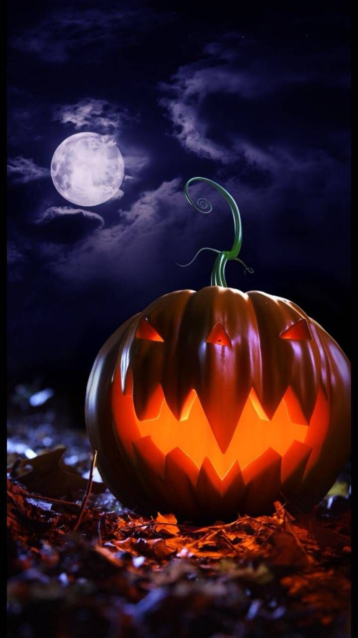 Download HD Halloween 2 Wallpaper by societys2cent   7a   on 720x1280