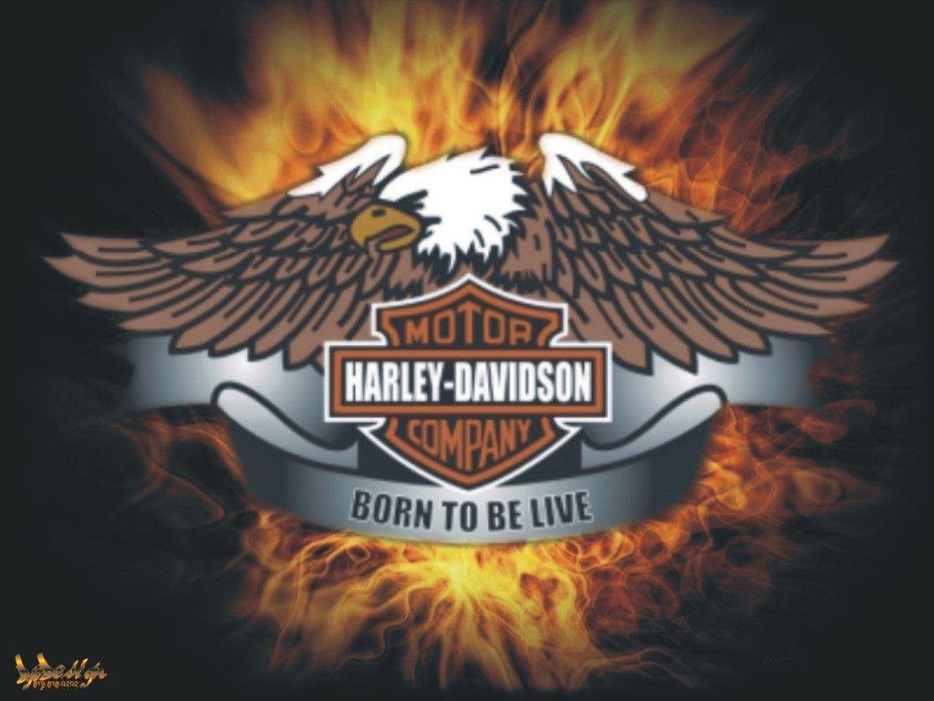 Harley Davidson Live Wallpaper - WallpaperSafari