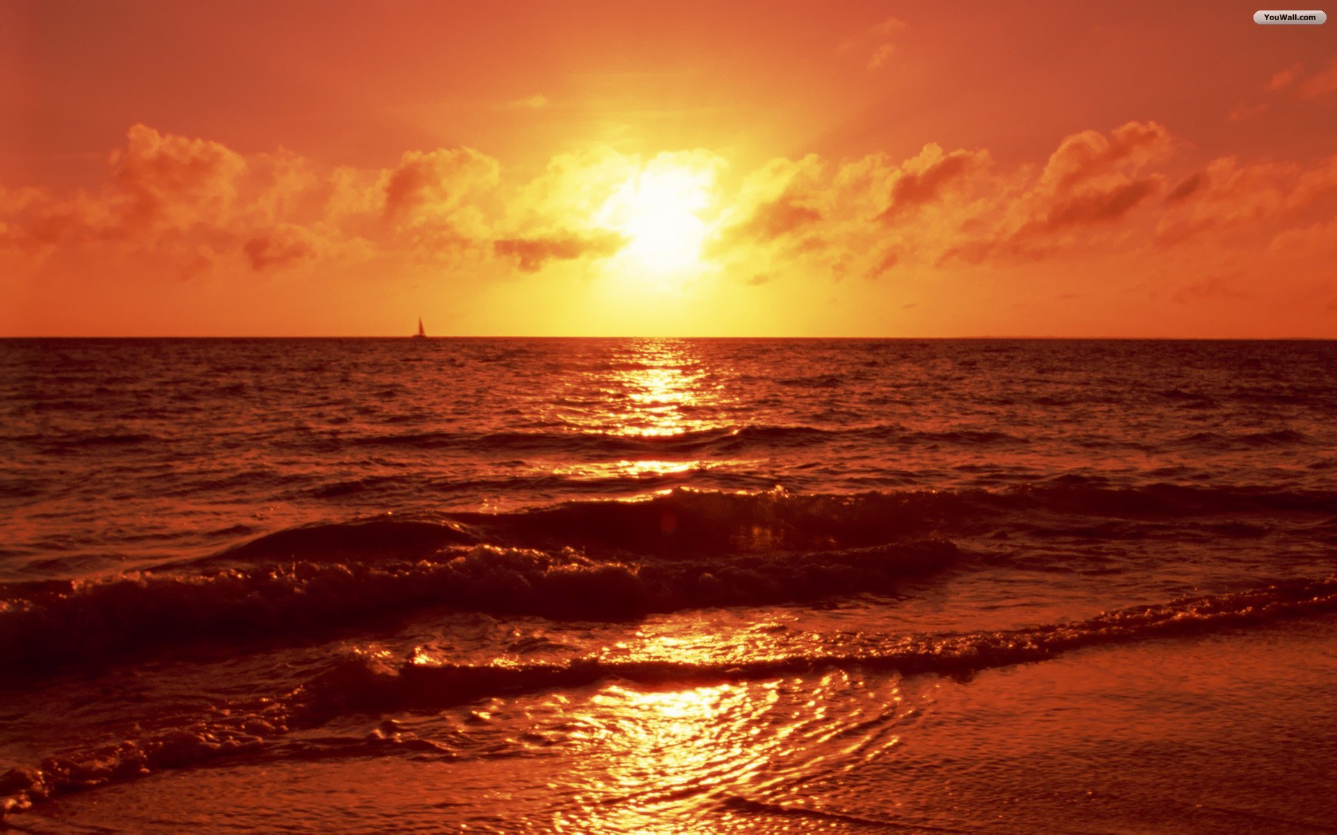 Beach Sunset Wallpaper Image Picture Wallpaper with 1920x1200 1920x1200