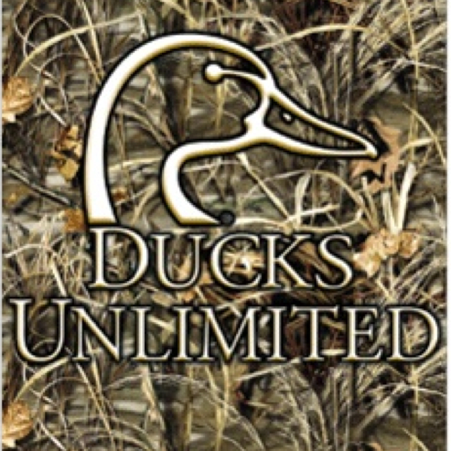 Ducks Unlimited Desktop Wallpaper - WallpaperSafari