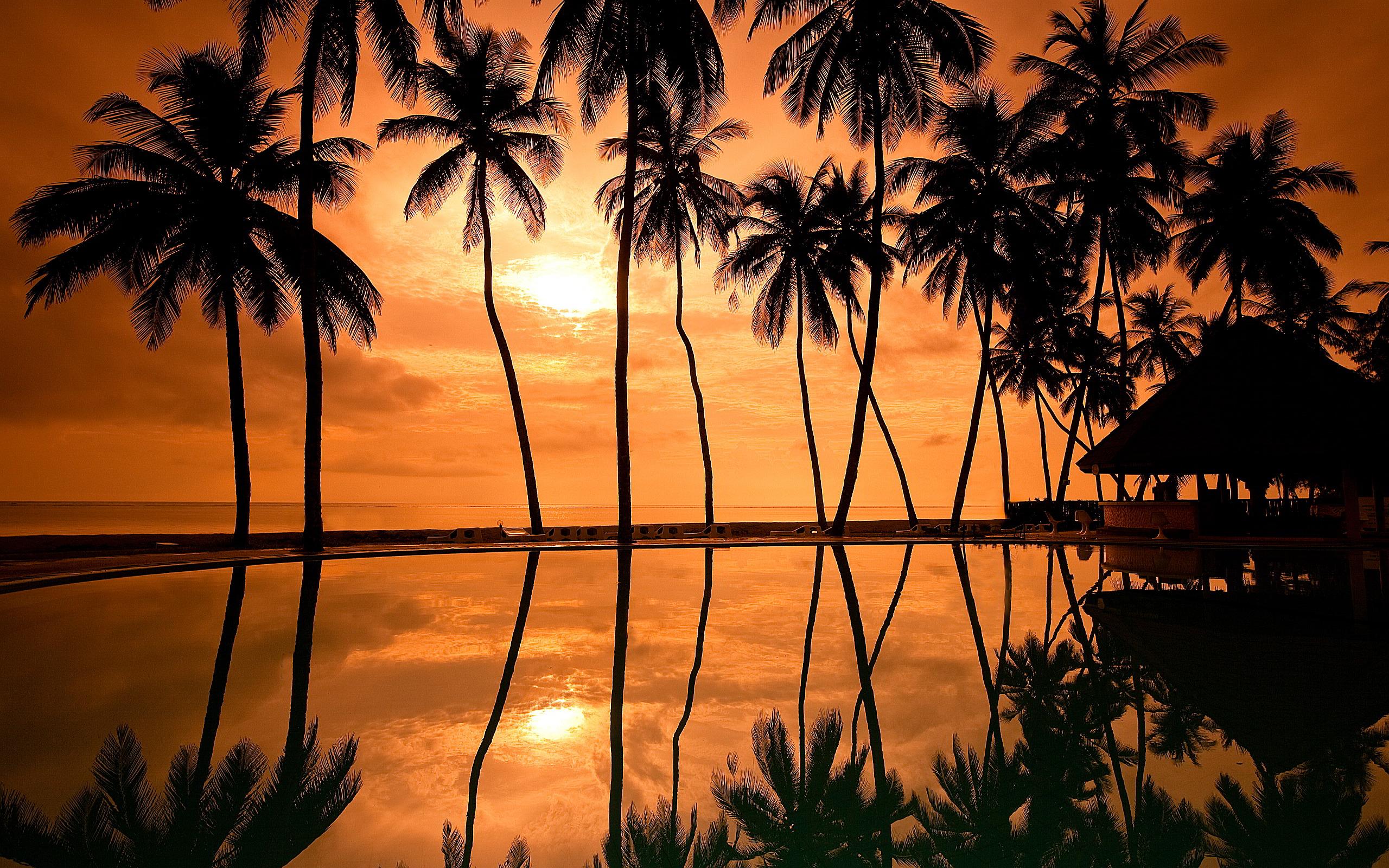 Sunset Hawaii Beach Wallpaper 2560x1600