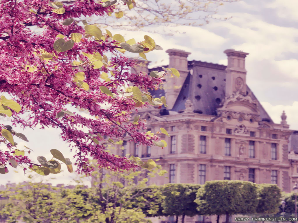 Flowers and stately homes Spring in Paris wallpapers 1024x768