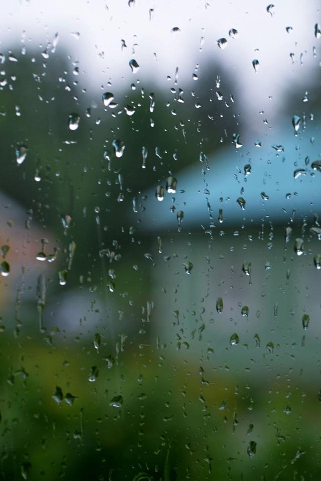 74 Rainy Day Wallpaper On Wallpapersafari