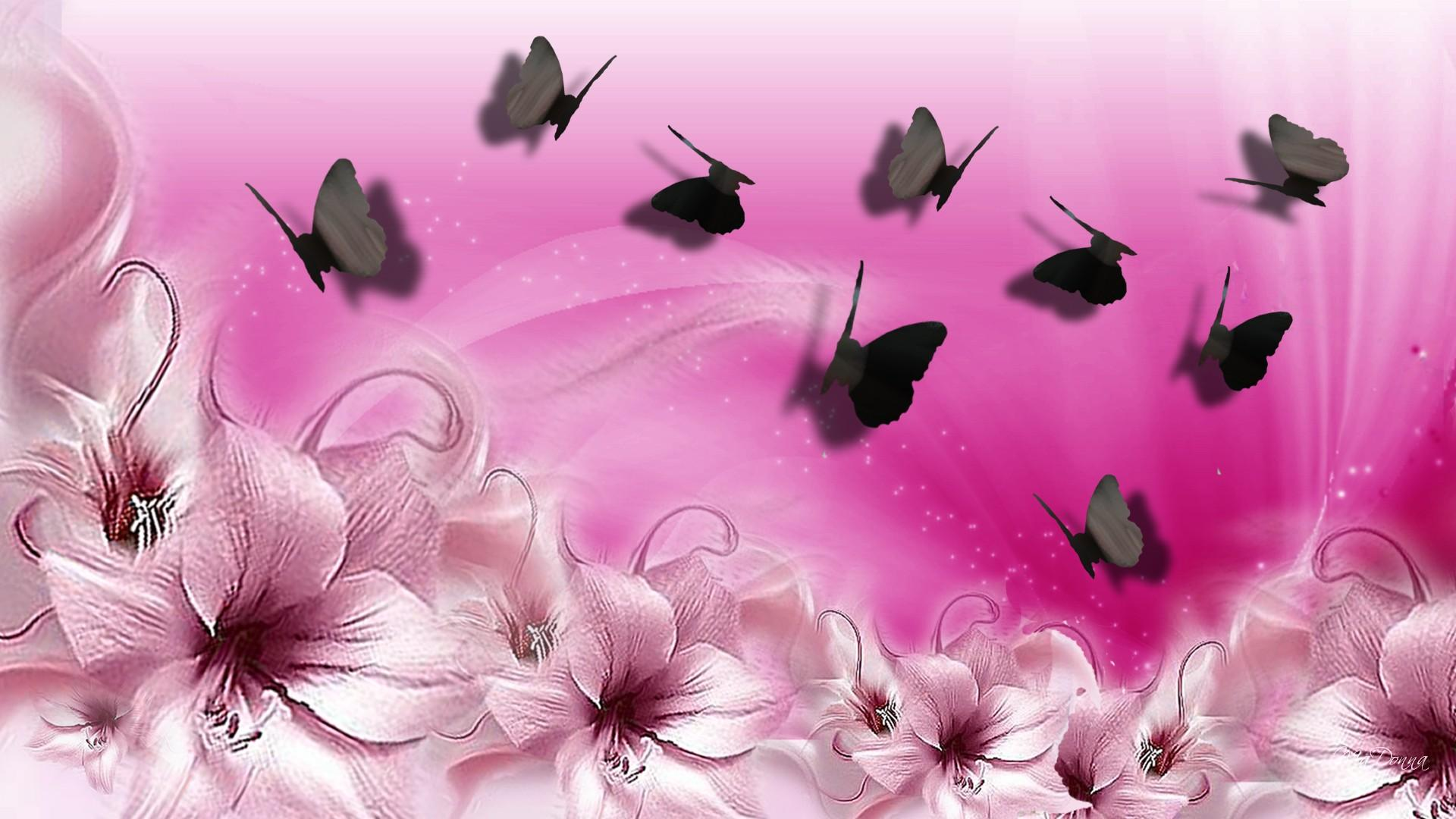 47+ Pink Butterfly Wallpaper Desktop on WallpaperSafari
