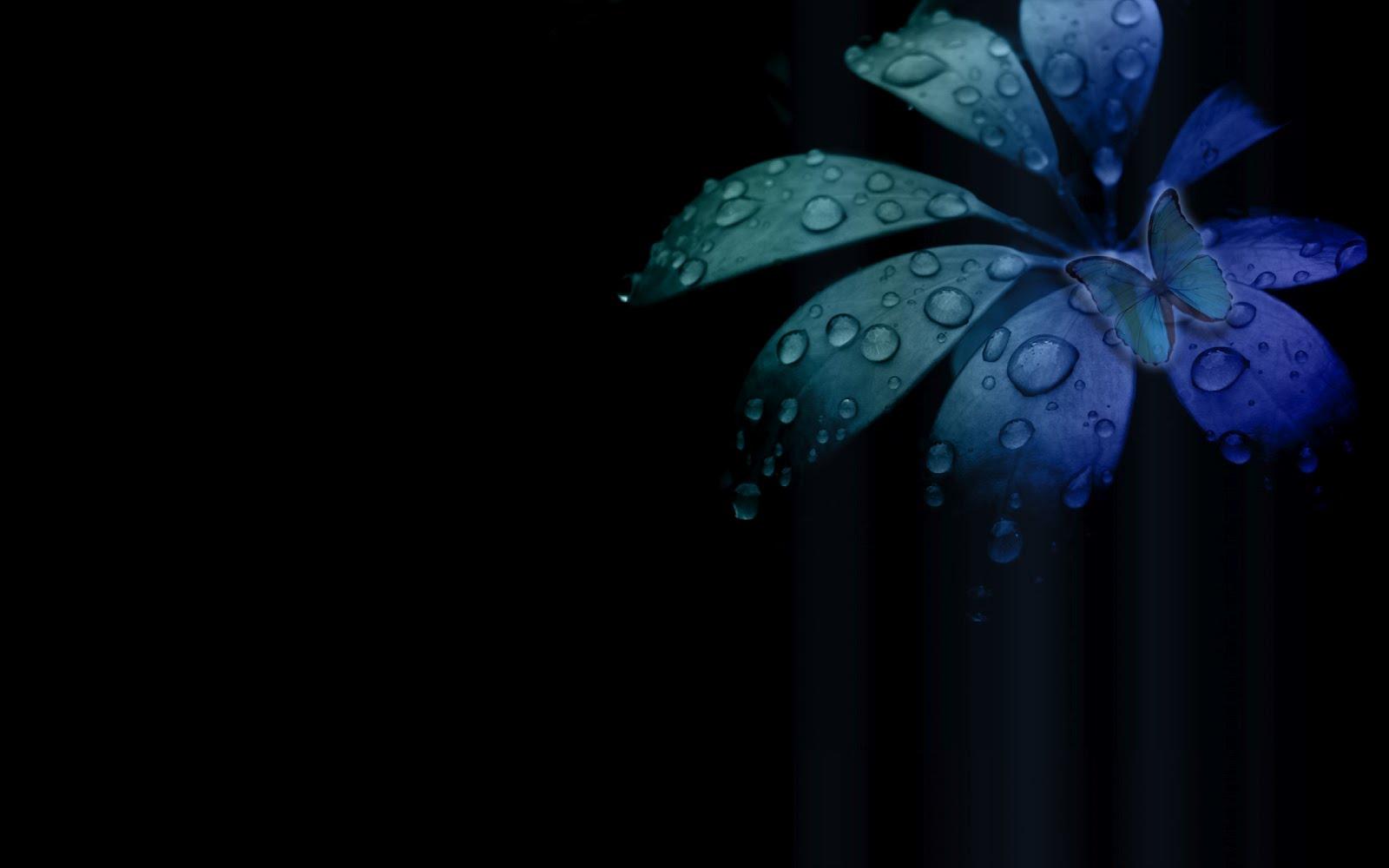 black and blue desktop wallpaper - wallpapersafari