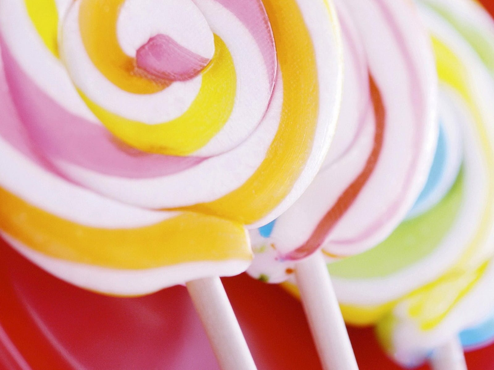 Close view of two swirled lollipops HD wallpaper Wallpaper Flare 1600x1200