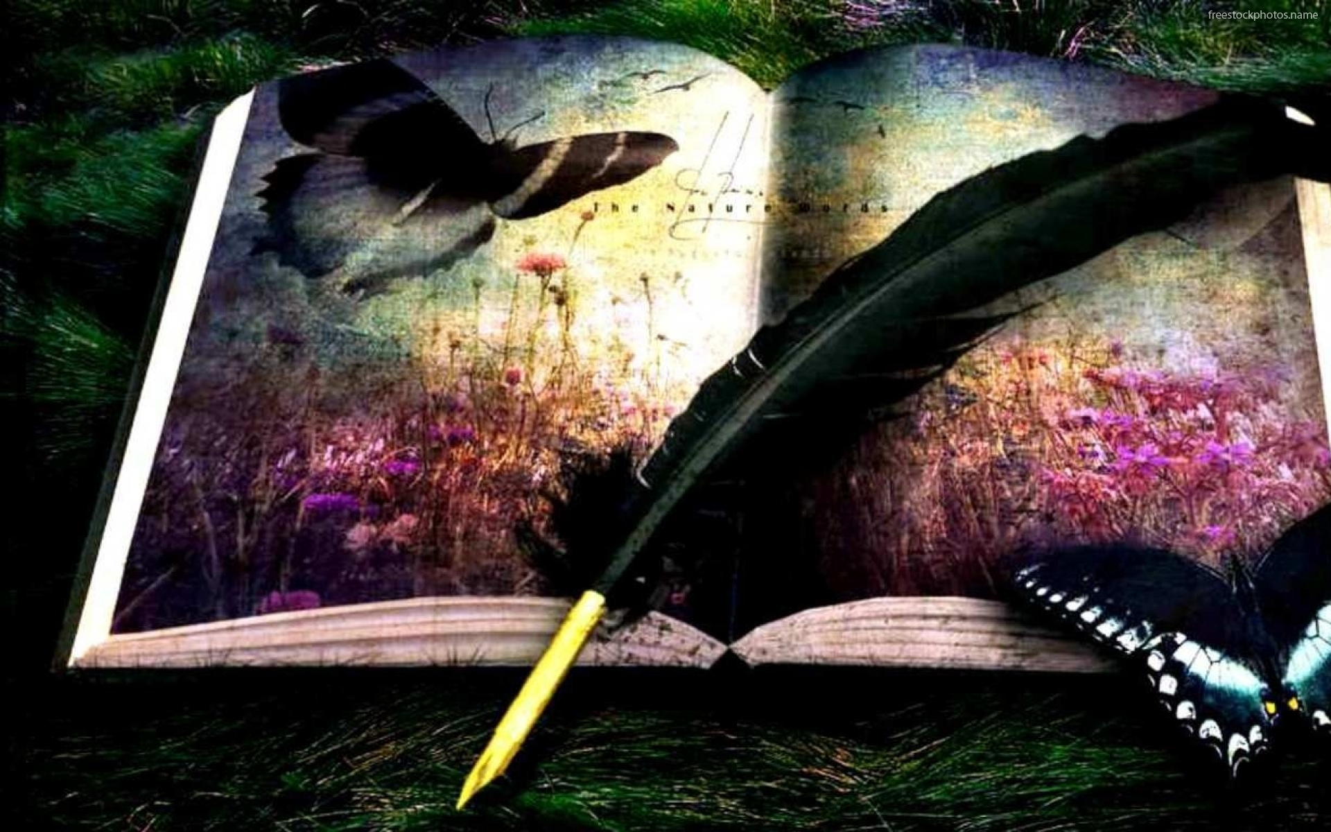 Download Stock Photos of painting of an open book images photography 1920x1200